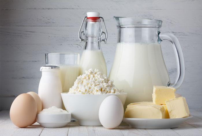 Süt Teknolojisi 2019 Taban Puanları ve Başarı Sıralamaları