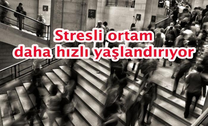 Stresli ortam daha hızlı yaşlandırıyor