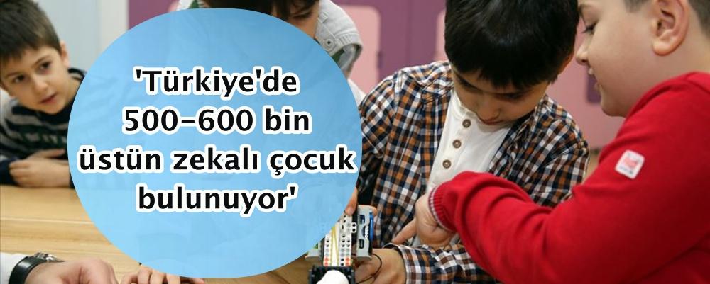 'Türkiye'de 500-600 bin üstün zekalı çocuk bulunuyor'