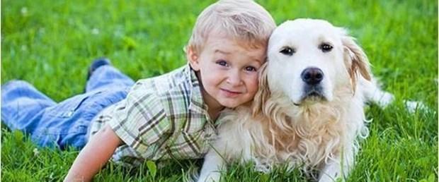 Köpek sahibi olmak kaygıyı azaltıyor