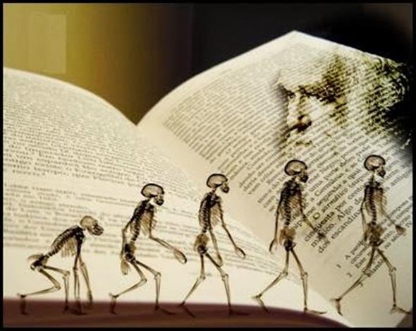 İbn-i Haldun, İbn Rüşd ve TÜBİTAK'ın Darwin Sansürü