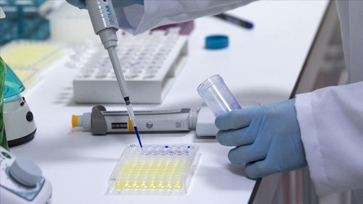 Yerli intranazal Kovid-19 aşısının mutasyona karşı etkisi kanıtlandı