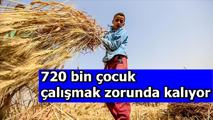 720 bin çocuk çalışmak zorunda kalıyor
