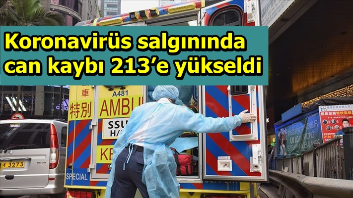 Koronavirüs salgınında can kaybı 213'e yükseldi