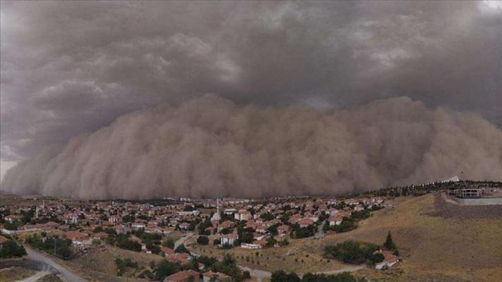 Uzmanından kum fırtınasına karşı bitkilendirme önerisi