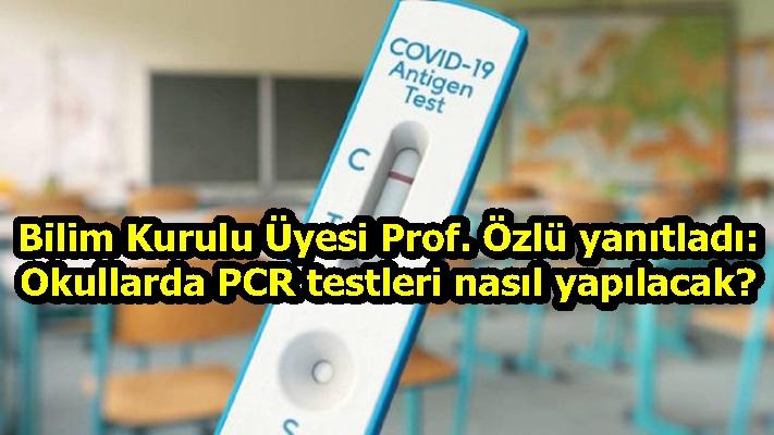 Bilim Kurulu Üyesi Prof. Özlü yanıtladı: Okullarda PCR testleri nasıl yapılacak?
