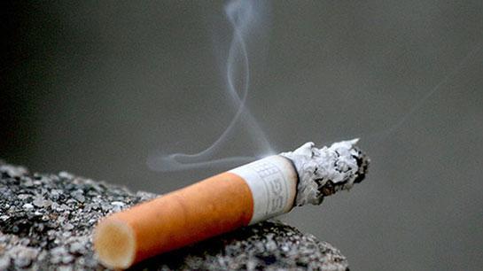 'Sigara, çevre kirliliğinin en büyük nedeni'