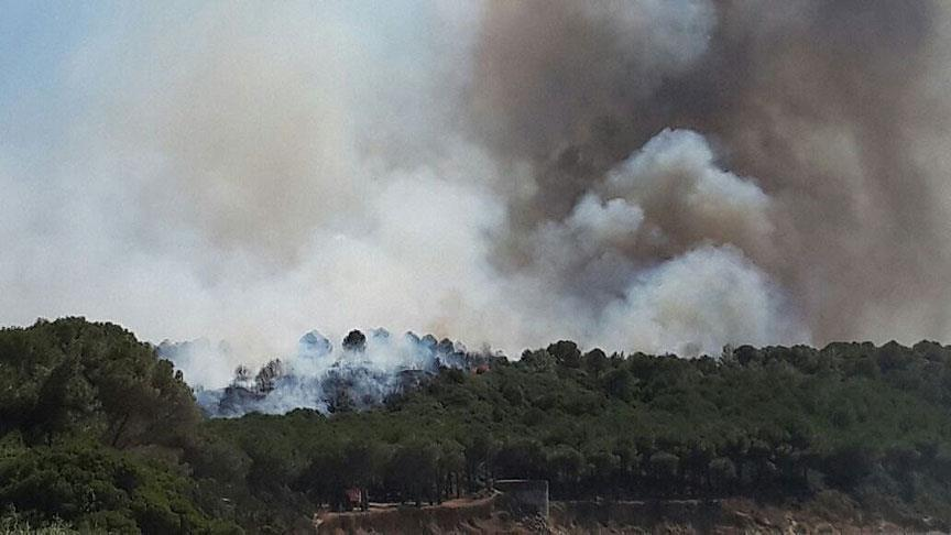 Tarihi Yarımada'da orman yangını!