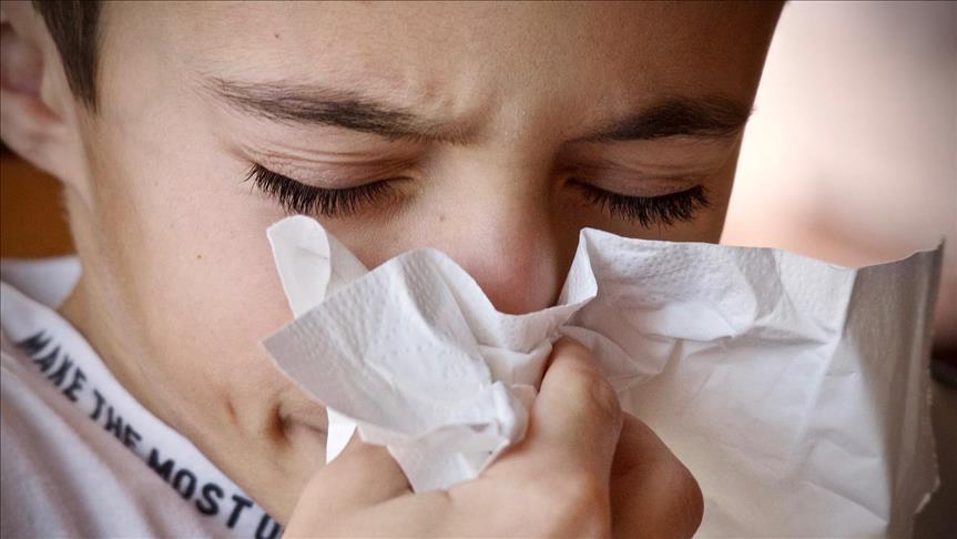 Domuz gribi değil mevsimsel grip'