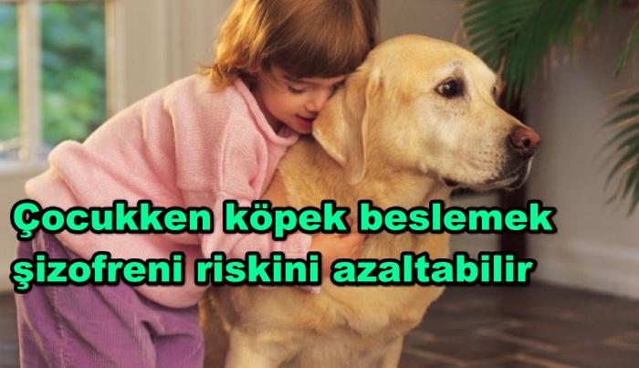 Çocukken köpek beslemek şizofreni riskini azaltabilir