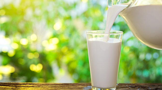 Uzun ve sağlıklı yaşam için daha çok süt şart!