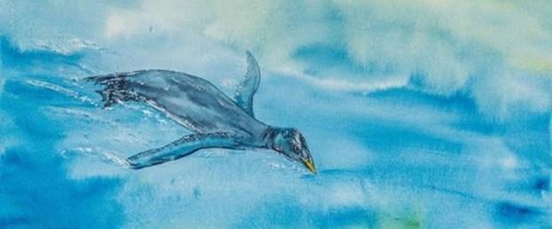 25 milyon yıllık kuş fosili bulundu