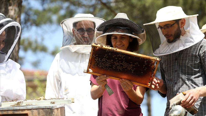 Ramazanda 'arı ürünleriyle dinç kalın' önerisi