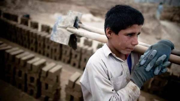 'Bakanlığımız çocuk işçiliğine karşı aktif mücadele etmekte'
