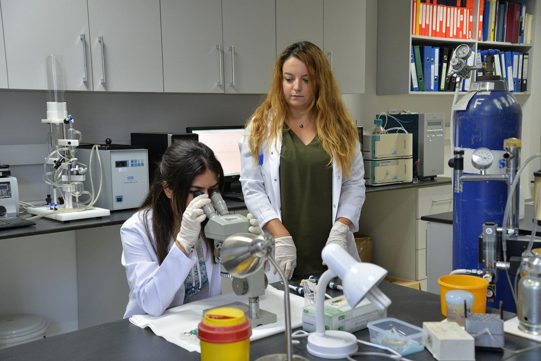 YÖK'ten Uludağ Üniversitesi'ne 47 doktora öğrencisi bursu