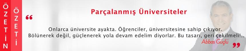 Parçalanmış Üniversiteler