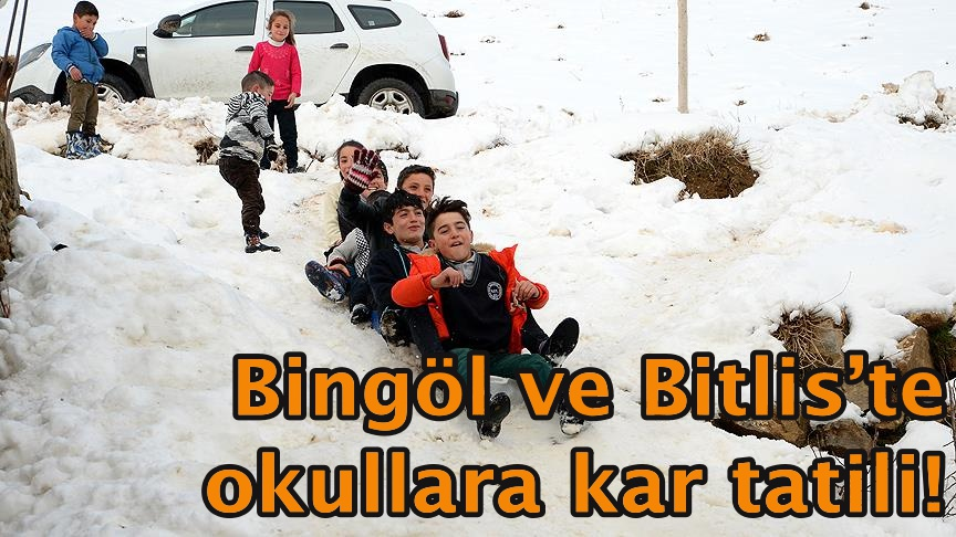 Bingöl ve Bitlis'te okullara kar tatili!