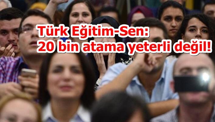 Türk Eğitim-Sen: 20 bin atama yeterli değil!