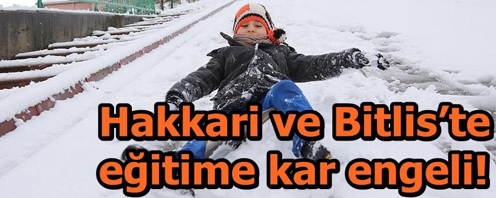 Hakkari ve Bitlis'te eğitime kar engeli!