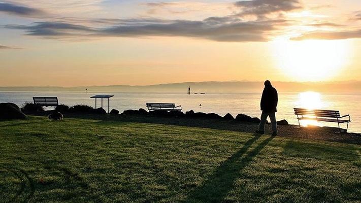 Yalnızlık en fazla 20'li, en az 60'lı yaşlarda hissediliyor