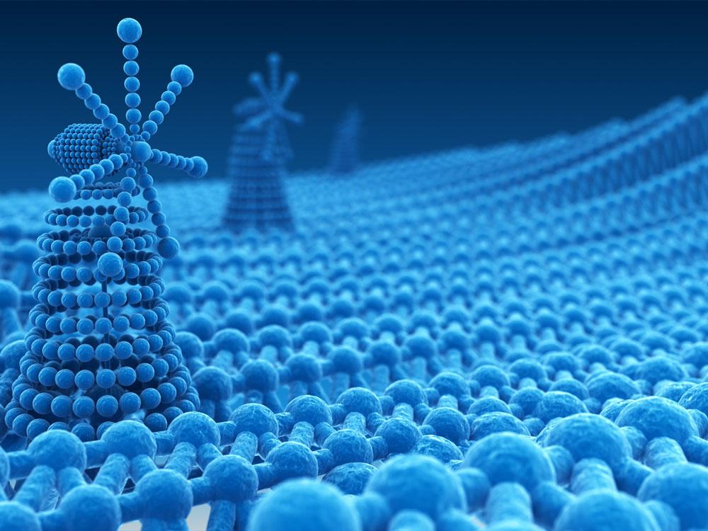 Nanoteknoloji Mühendisliği  2019 Taban Puanları ve Başarı Sıralamaları