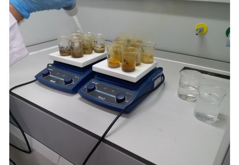 Laboratuvar Teknolojisi (2 Yıllık) 2019 Taban Puanları ve Başarı Sıralamaları