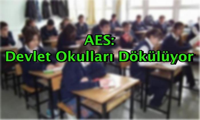 AES: Devlet Okulları Dökülüyor