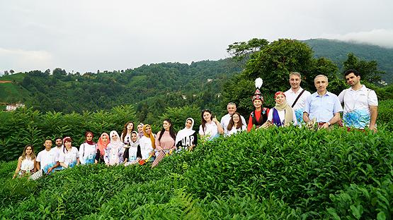 Dört kıtadan 700 öğrenci çay topladı, horon tepti