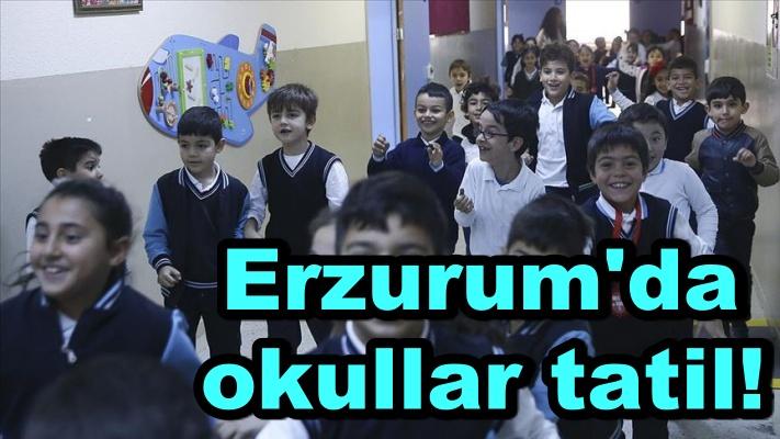 Erzurum'un kurtuluş yıldönümü nedeniyle ildeki okullar tatil