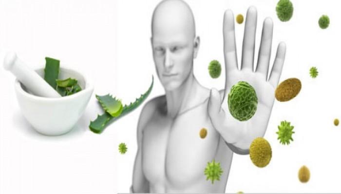 Bağışıklık sistemini güçlendirmek için 10 altın öneri!